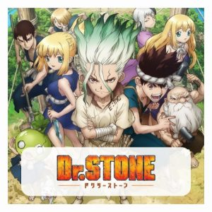 Dr Stone Swimsuits